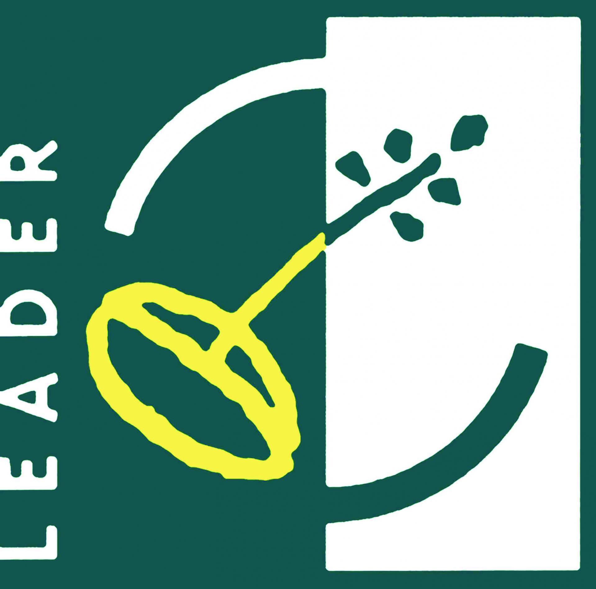 Logo leader htedef